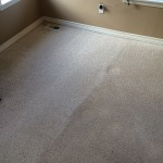 Carpet Cleaning Boynton Beach0c014f5e1c2e8de16df29c139f318bc8
