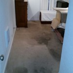 Carpet Cleaning Boynton Beach0ce945225eda36543303235c439afb07