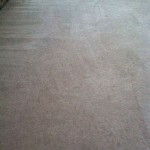Carpet Cleaning Boynton Beach26900978f22bbb69942983eb58ffd0eb