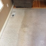Carpet Cleaning Boynton Beach493c6b9fe804265ba0d13391fae736d8