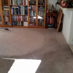 Carpet Cleaning Boynton Beach4db1749219d71fc401b762ecb8d0dbbc
