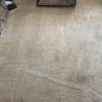 Carpet Cleaning Boynton BeachIMG955685