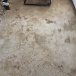 Carpet Cleaning Boynton BeachIMG956059